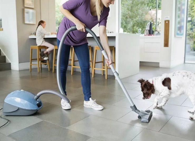 vaccum-cleaner-for-pet